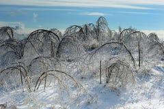 Tempestade de gelo Imagens de Stock