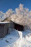 Tempestade de gelo Imagem de Stock