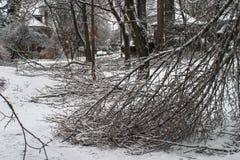 Tempestade de gelo de Toronto Imagem de Stock Royalty Free
