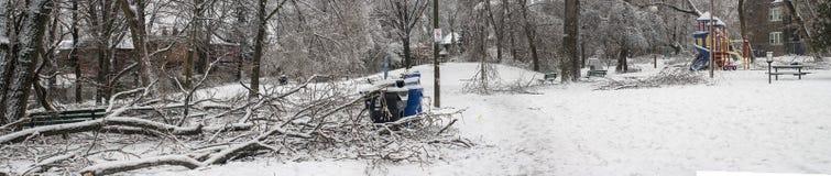 Tempestade de gelo de Toronto Fotografia de Stock