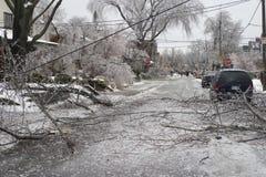 Tempestade de gelo de Toronto Imagem de Stock