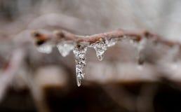 Tempestade de gelo no limiar da mola foto de stock