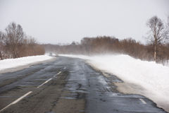 Tempestade de neve Foto de Stock Royalty Free