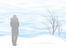 Tempestade de neve branca Fotografia de Stock Royalty Free