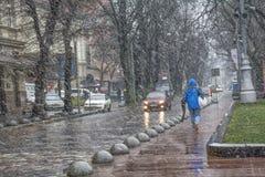 Tempestade de neve com nevadas fortes e vento molhados Fotografia de Stock