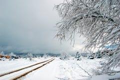 Tempestade de neve do sudoeste fotografia de stock royalty free