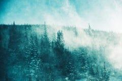 A tempestade do inverno imagens de stock royalty free