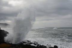 Tempestade do inverno Imagens de Stock Royalty Free