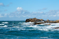 Tempestade do mar Imagens de Stock Royalty Free