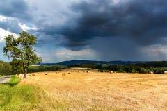 Tempestade do verão o campo Pacotes da palha no campo no dia de verão da floresta na exploração agrícola em República Checa Milho imagens de stock