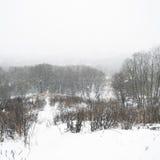 Tempestade extrema da neve Foto de Stock