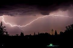 Tempestade na floresta fotografia de stock