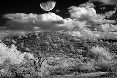 Tempestade no deserto fotos de stock royalty free