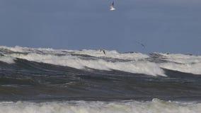 Tempestade no mar Báltico video estoque