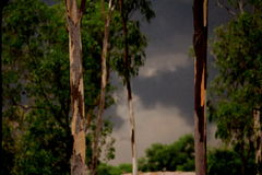 Tempestade repentina! imagem de stock royalty free