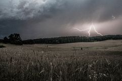Tempestade sobre a floresta Foto de Stock Royalty Free