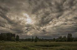 Tempestade sobre a floresta fotos de stock