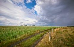 Tempestade sobre os campos fotografia de stock royalty free