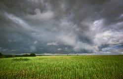 Tempestade sobre os campos fotos de stock