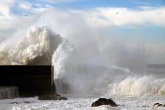 Tempestades Fotos de Stock Royalty Free