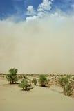 Tempestades de areia Imagem de Stock