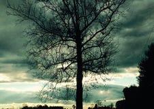 tempestuoso Foto de archivo libre de regalías