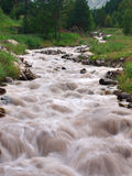 Tempestuous mountain river. Natural composition Royalty Free Stock Photo