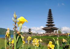 Tempiale del Bali con i fiori Fotografie Stock Libere da Diritti