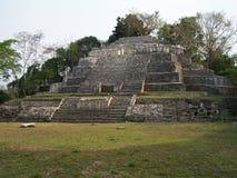 Tempiale del giaguaro Immagine Stock Libera da Diritti