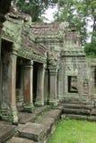 Tempiale della giungla - Angkor Wat Fotografia Stock