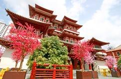 Tempiale della reliquia del dente del Buddha a Singapore Fotografia Stock Libera da Diritti