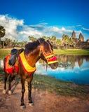Tempiale di Angkor Wat al tramonto La Cambogia cambodia fotografia stock libera da diritti