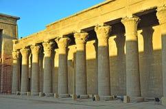 Tempiale di Edfu, Egitto Fotografie Stock
