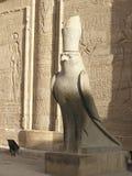 Tempiale di Edfu, Egitto, Africa Fotografia Stock Libera da Diritti