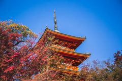 Tempiale di Kiyomizu-dera fotografie stock libere da diritti