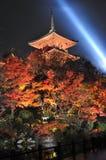 Tempiale di notte Fotografia Stock Libera da Diritti
