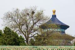 Tempiale di Pechino di cielo Immagini Stock Libere da Diritti