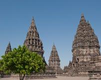 Tempiale di Prambanan, Java, Indonesia immagine stock