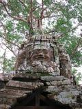 Tempiale di Preah Khan in Angkor Wat (Cambogia). immagine stock libera da diritti