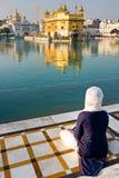 Tempiale dorato a Amritsar, Punjab, India. immagini stock