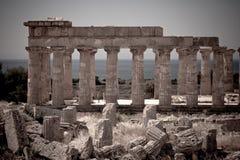 Tempiale greco in Selinunte Fotografie Stock Libere da Diritti
