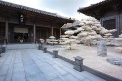 Tempiale infrarosso Immagine Stock Libera da Diritti