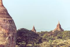 Tempie antiche in Bagan Immagine Stock Libera da Diritti
