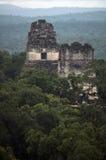 Tempie rovinate del parco nazionale di Tikal, Guatemala Fotografia Stock