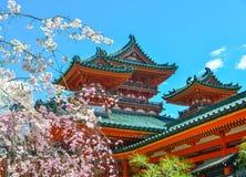 Tempio antico con il fiore di ciliegia fotografia stock