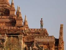Tempio in Bagan ad alba, Myanmar immagine stock