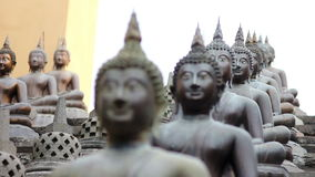 Tempio buddista dello Sri Lanka video d archivio