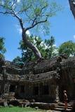 Tempio del forcone della La della Cambogia Immagini Stock
