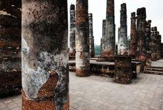 Tempio del Greco classico alle rovine della città antica Paestum, Cilento, Italia Fotografia Stock Libera da Diritti