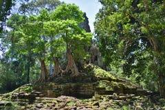 Tempio della Cambogia Fotografia Stock